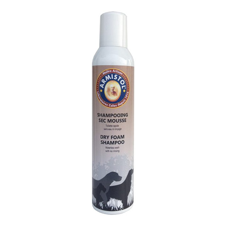 Shampoing sec mousse